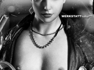 STAHLGRUBER Jahreskalender 2011 Cover