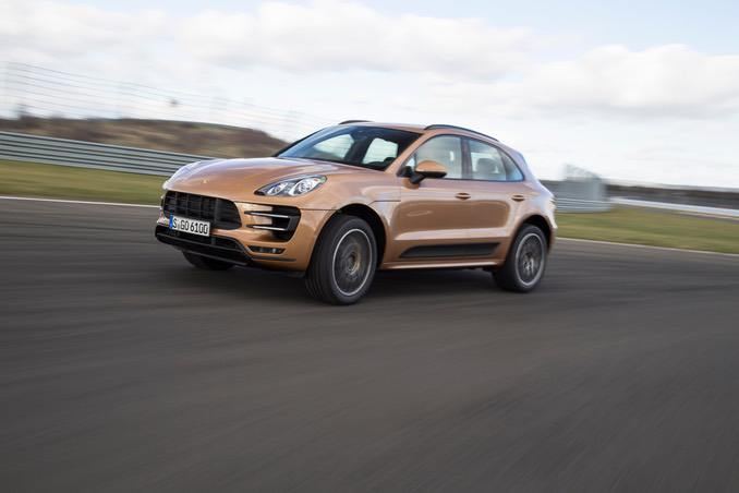 Foto: Macan Tiger in Bronze